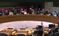 Le Conseil de sécurité crée un Bureau intégré des Nations Unies pour remplacer la MINUJUSTH